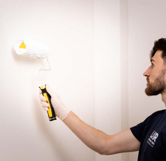 Devon Mould Removers